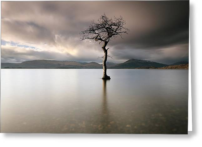 Loch Lomond Lone Tree Greeting Card