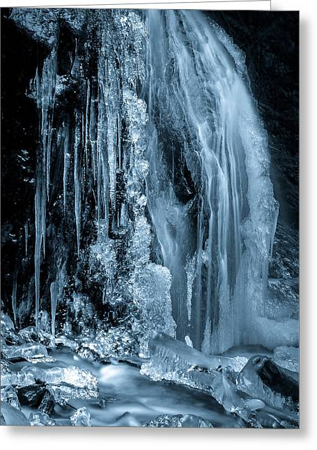 Locked In Ice Greeting Card
