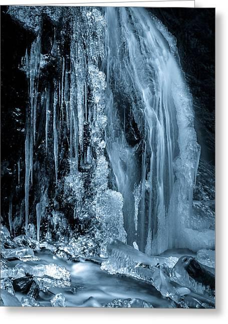 Locked In Ice Greeting Card by Brad Koop