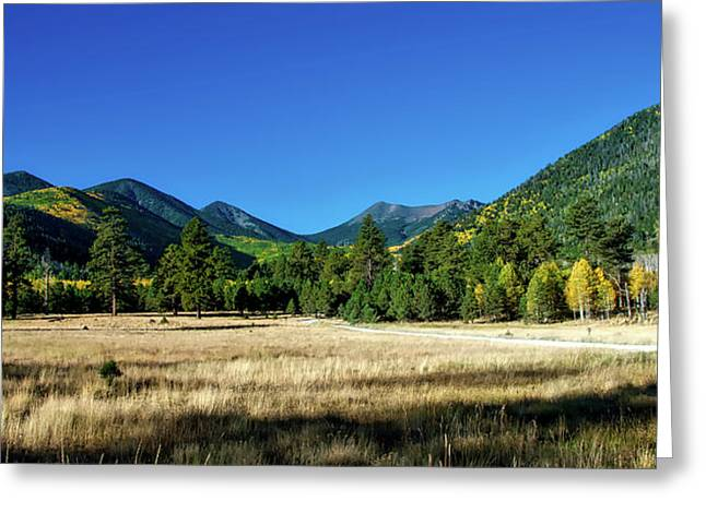 Lockett Meadow - Coconino National Forest Greeting Card