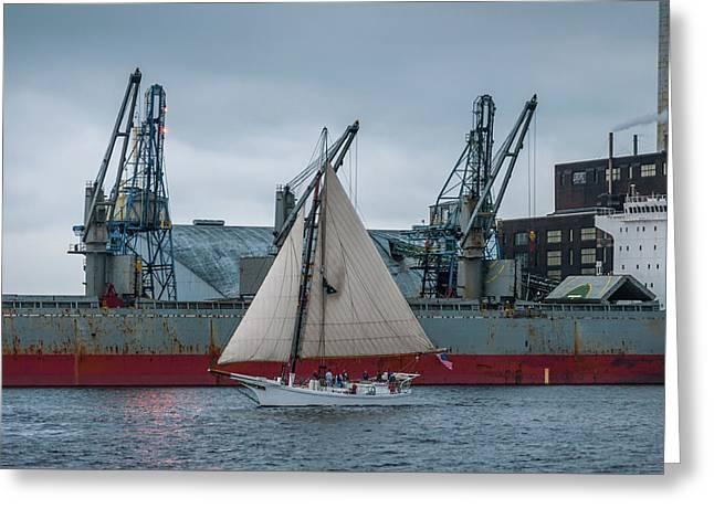 Locust Point Sailing Greeting Card