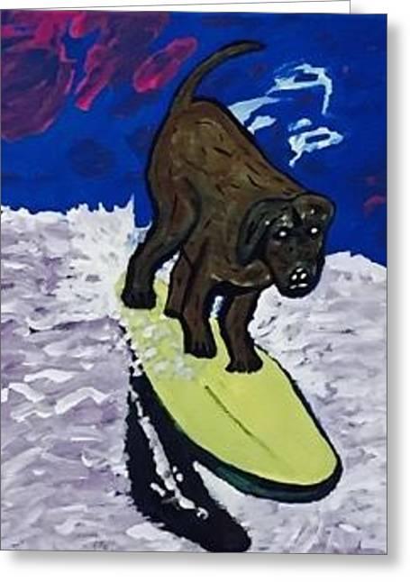 Loews Coronado Bay Resort Surf Dog Surfing Competition Greeting Card by Jonathon Hansen