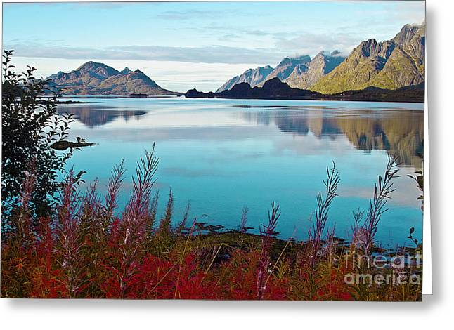Lofoten Islands Greeting Card by Heiko Koehrer-Wagner