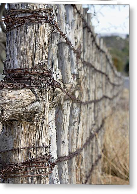 Greeting Card featuring the photograph Log And Wire Fence by Phyllis Denton