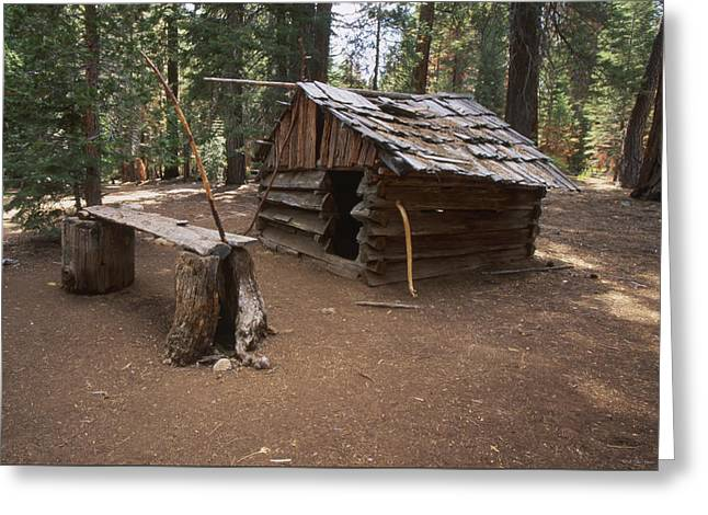 Log Cabin Greeting Card by Soli Deo Gloria Wilderness And Wildlife Photography