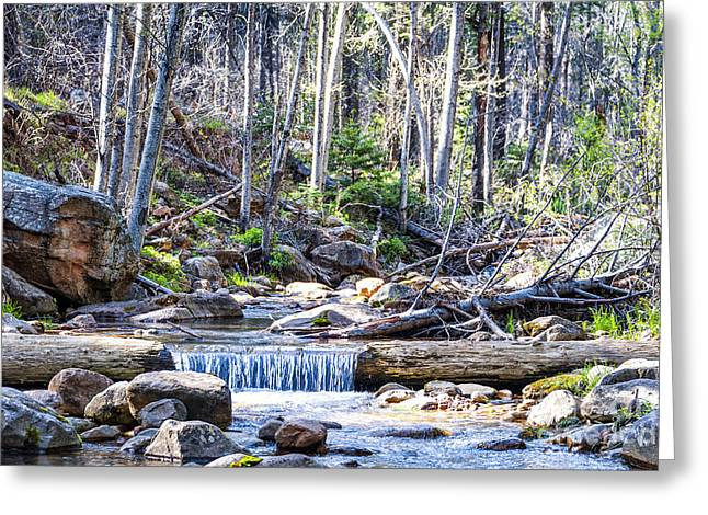 Greeting Card featuring the photograph Log Falls by Anthony Citro