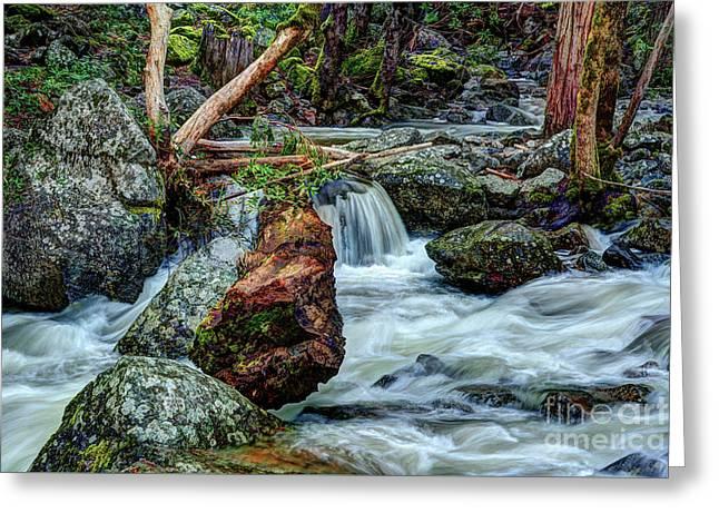 Log In Bridalveil Creek In Yosemite Greeting Card by Terry Garvin