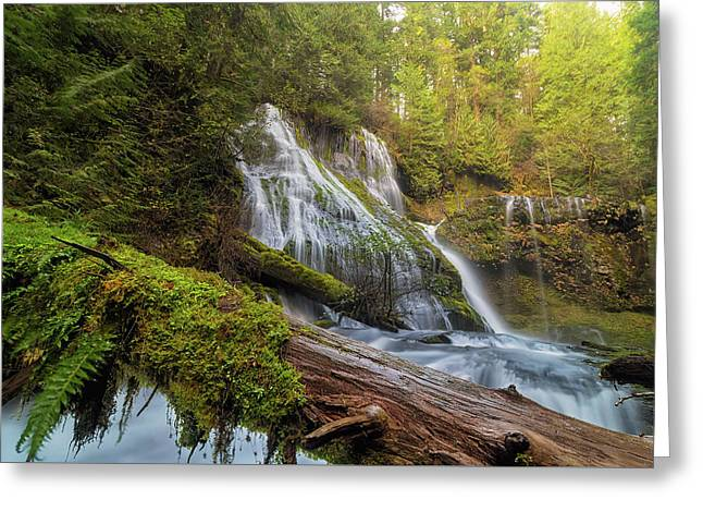 Log Jam By Panther Creek Falls Greeting Card