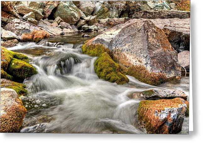 Logan Creek, Montana 2 Greeting Card