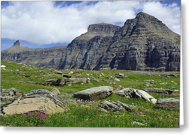 Logan Pass Meadow And Mountains In Glacier National Park Greeting Card