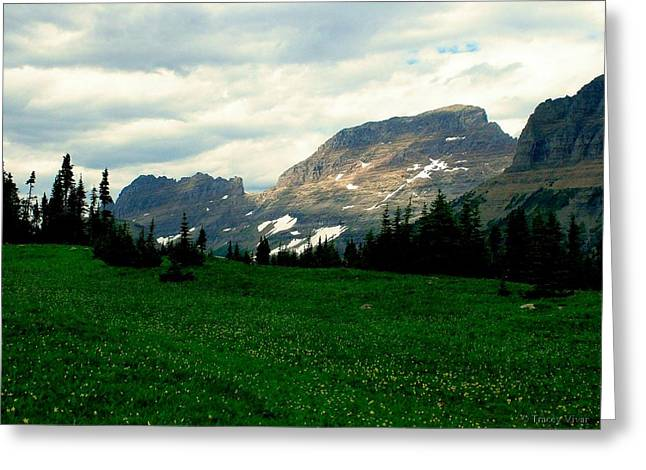 Logan's Pass Greeting Card