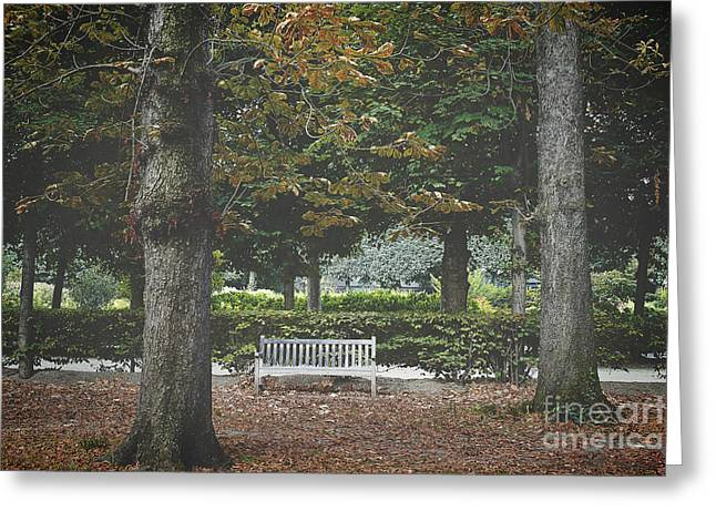Lone Bench At The Rodin Museum Paris Greeting Card by Ivy Ho