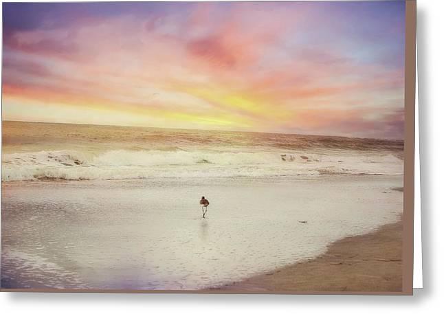Lone Bird At Sunset Greeting Card