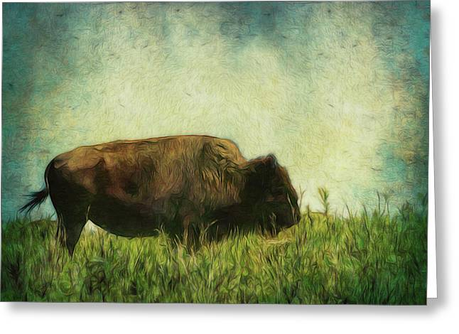 Greeting Card featuring the photograph Lone Bison On The Prairie by Ann Powell