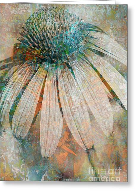 Lone Coneflower Greeting Card by T Anderson