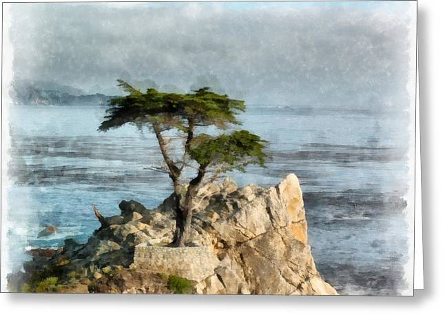 Lone Cypress Watercolor Greeting Card