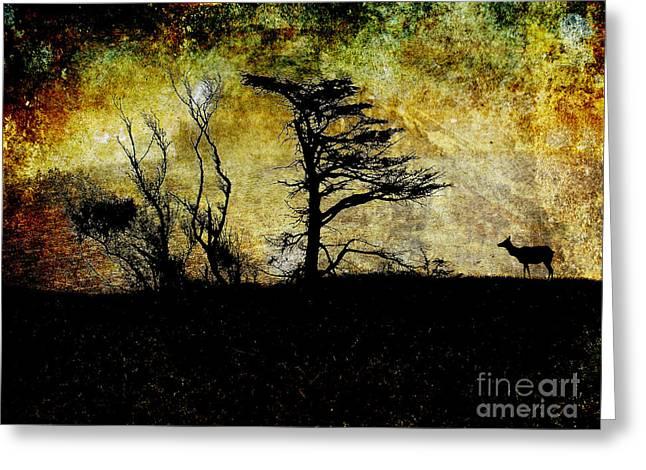 Lone Elk Of Tomales Bay . Texture Greeting Card