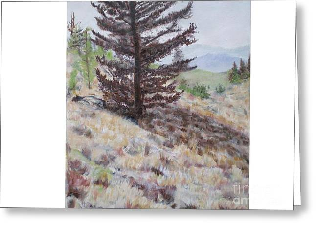 Lone Mountain Tree Greeting Card by Hal Newhouser