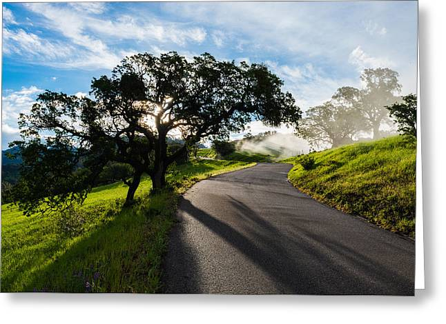 Lone Oak On Figueroa Mountain Road Greeting Card