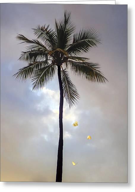 Lone Palm Tree Greeting Card