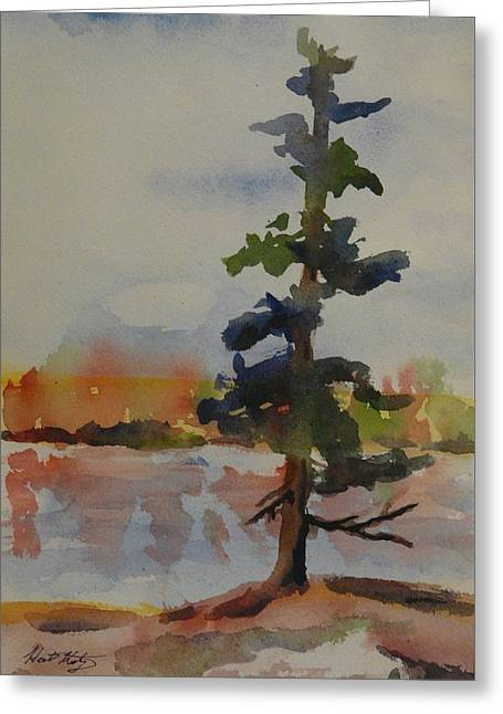 Lone Pine Greeting Card by Heather Kertzer