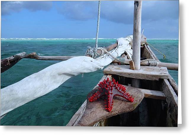Lone Red Starfish On A Wooden Dhow 1 Greeting Card