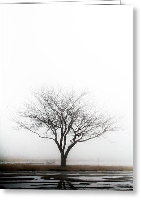 Lone Reflection Greeting Card