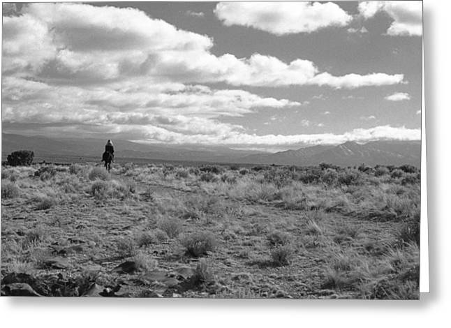 Lone Rider West Of Taos Greeting Card