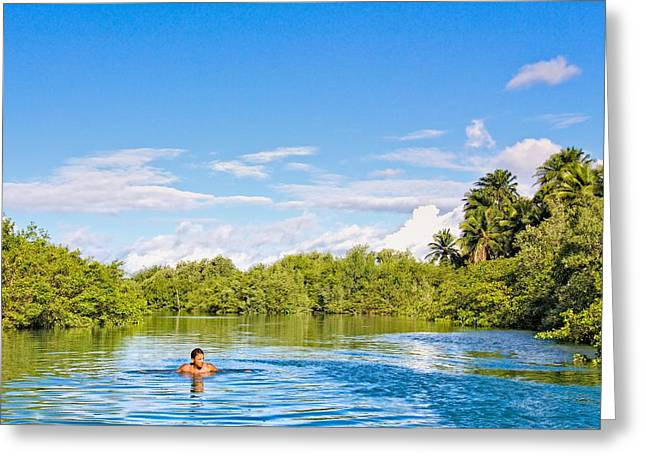 Greeting Card featuring the photograph Lone Swimmer by Kim Wilson