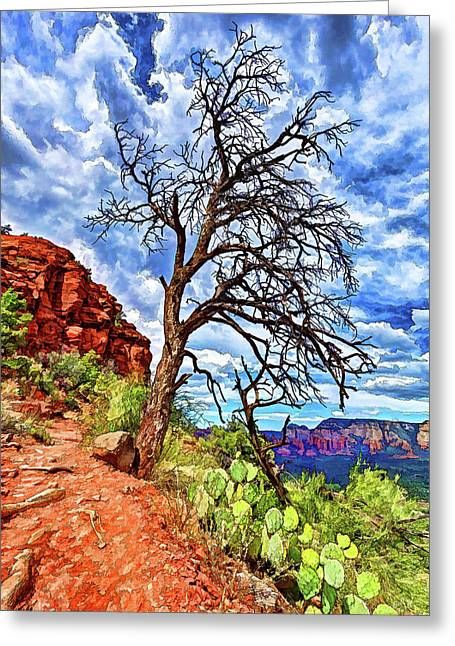 Greeting Card featuring the photograph Lone Tree At Airport Mesa by ABeautifulSky Photography