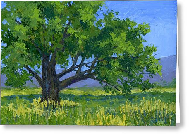 Lone Tree Greeting Card by David King