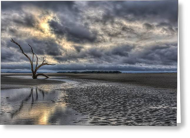 Lone Tree Under Moody Skies Greeting Card