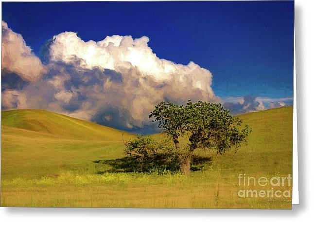 Lone Tree With Storm Clouds Greeting Card
