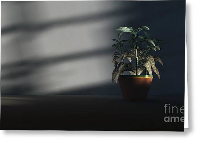 Loneliness  Greeting Card by Richard Rizzo