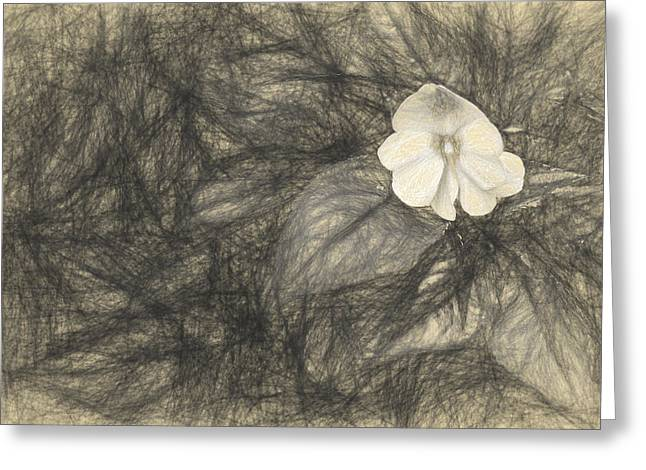 lonely 1 II Greeting Card