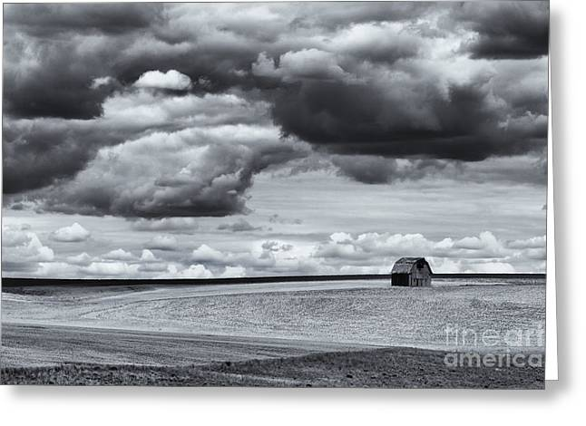 Lonely Barn Greeting Card by Mike Dawson