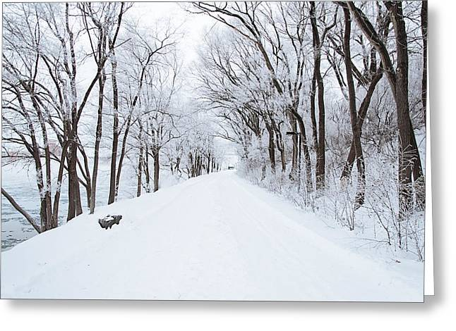 Lonely Snowy Road Greeting Card