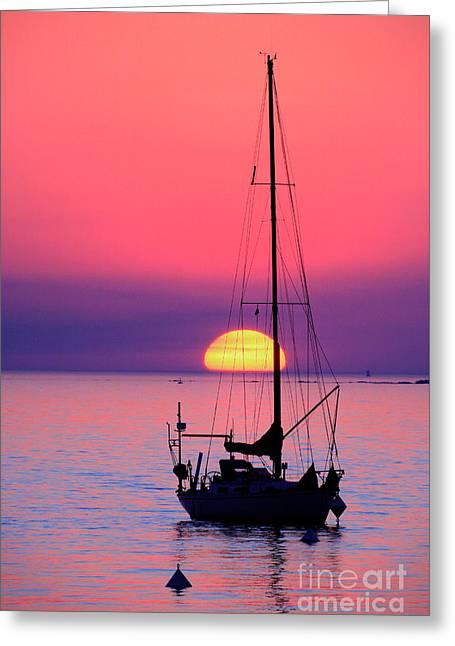 Greeting Card featuring the photograph Lonely Sunset by Bernardo Galmarini