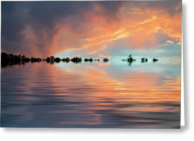 Lonesome Bird Greeting Card by Jerry McElroy
