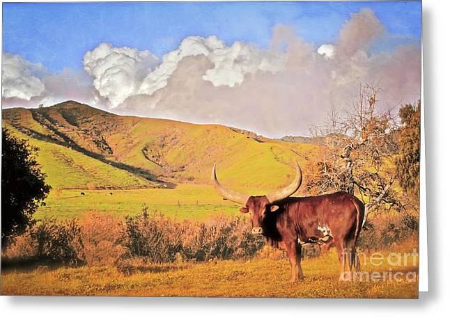 'lonesome Longhorn' Greeting Card