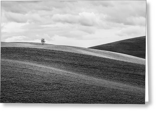 Lonesome Greeting Card by Ryan Manuel