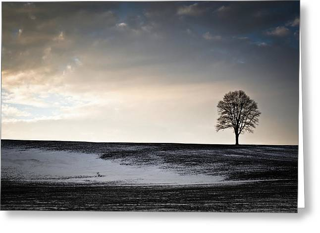 Lonesome Tree On A Hill IIi Greeting Card