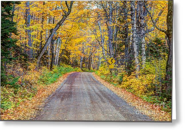 Long And Winding Autumn Roads North Shore Minnesota Greeting Card by Wayne Moran