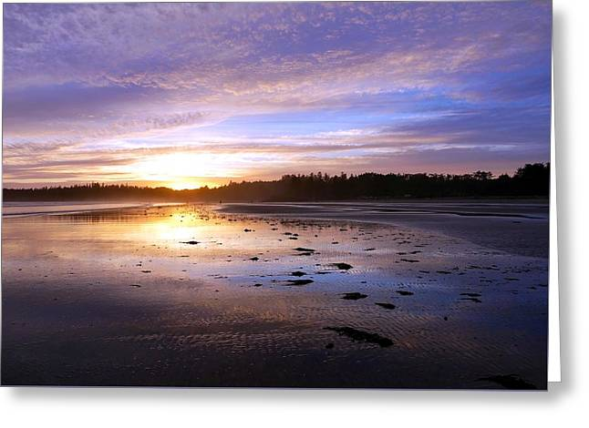 Long Beach, British Columbia Greeting Card by Heather Vopni