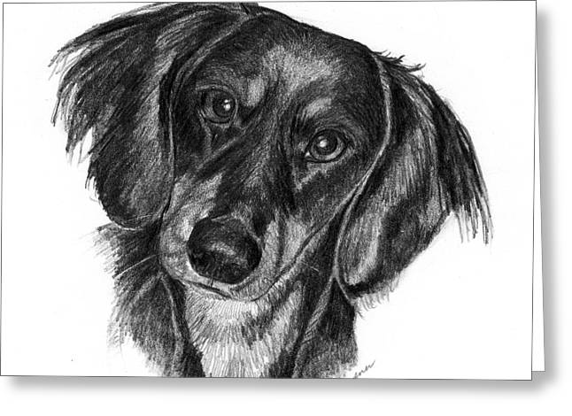 Long-haired Dachshund Greeting Card by Deb Gardner