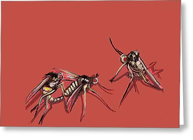 Long-legged Flies Greeting Card