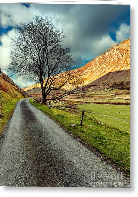 Long Road Home Greeting Card by Adrian Evans