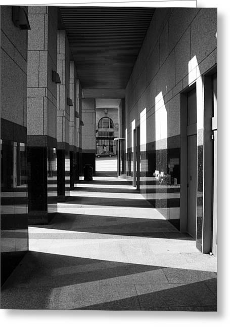 Greeting Card featuring the photograph Long Shadows by Monte Stevens