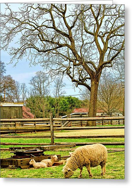 Long Street Farms Holmdel New Jersey Greeting Card by Geraldine Scull