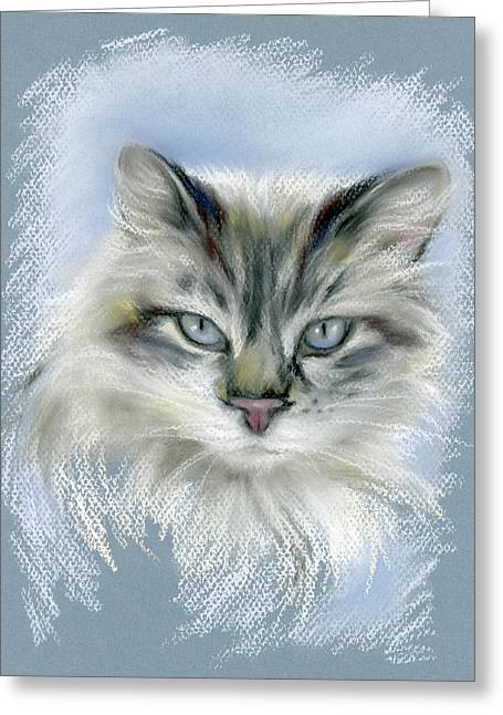 Longhaired Cat With Blue Eyes Greeting Card